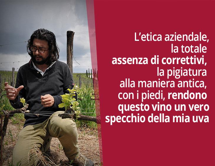 Stefano Amerighi