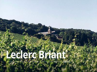 Leclerc Briant
