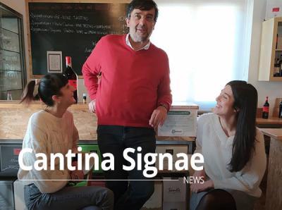 Signae