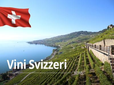 Le eccellenze vitivinicole svizzere: qualità e rarità