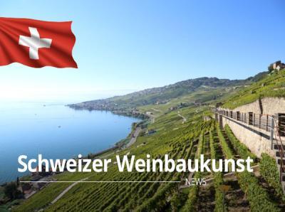 Schweizer Weinbaukunst: Qualität und Rarität