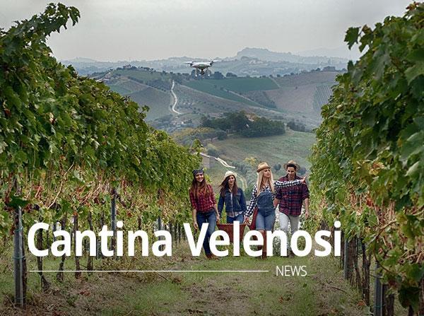 Cantina Velenosi